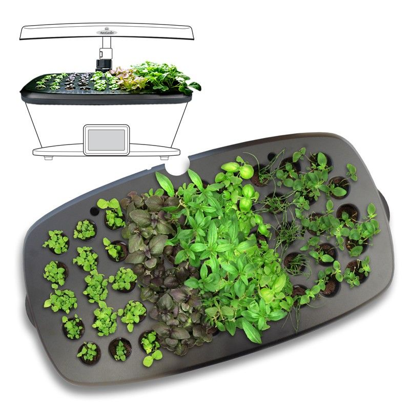 Aerogarden Seed Starting System For All Extra Ultra And 640 x 480