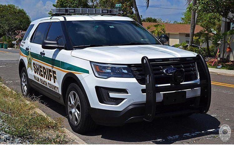 What Exactly Is Your Main Choice Custom Of The Fordexpedition Ford Police Ford Suv Interceptor
