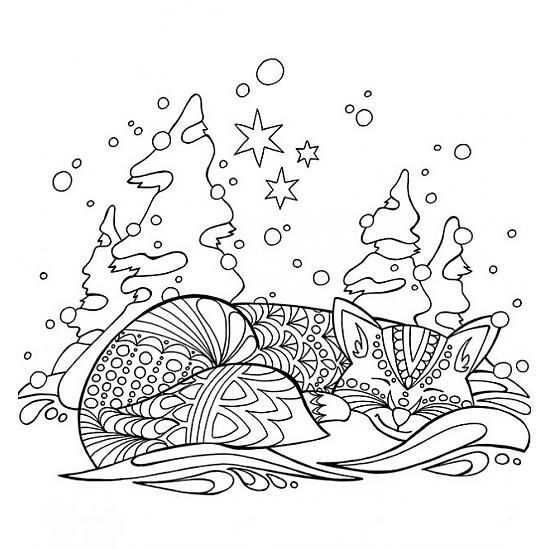 Cat In The Snow Adult Coloring PagesCat