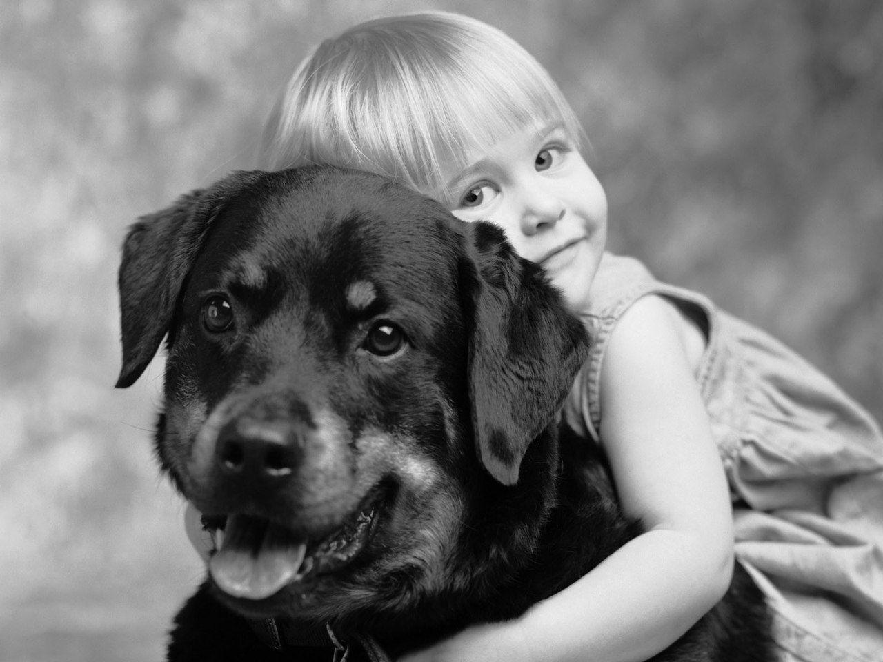 Поздравления, собака друг человека с надписью на картинке