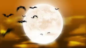 Full Moon Halloween Animation Loop Halloween Animations And After Effects Templates By Holiday Video St Halloween Full Moon Full Moon After Effects Templates