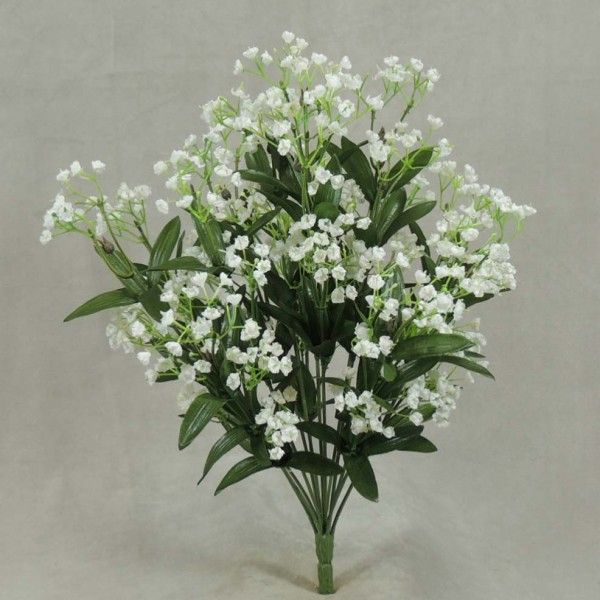 Beautiful baby's breath wildflower bush in white with ...