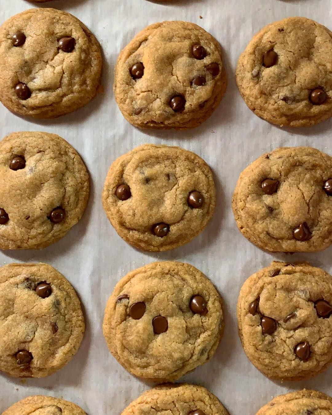 Chocolate cookies with images chocolate chip cookies