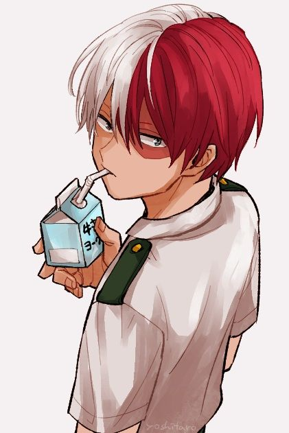 Todoroki Shouto -His quirk is pretty cool, to have ice and fire
