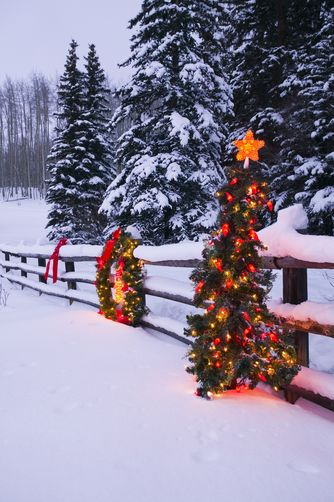 Split Rail Fence Decorated w/Wreath & Christmas Tree ... on fence with outdoor christmas lights, fence split rail christmas decorating, fence post christmas ideas, fence painting ideas,
