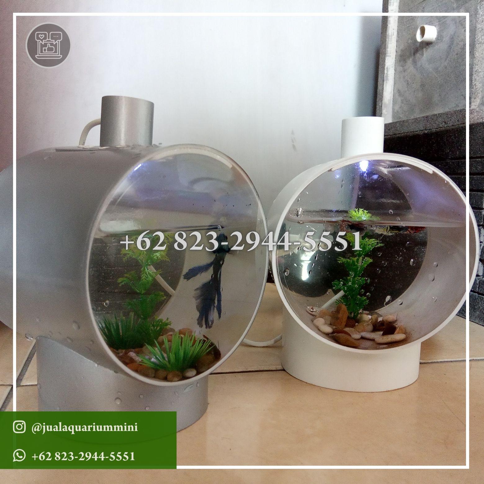 Wa 62 823 2944 5551 Toko Jual Ikan Cupang Hias Aquarium Mini Tangerang Banten In 2020 Mini Aquarium Aquarium Instagram