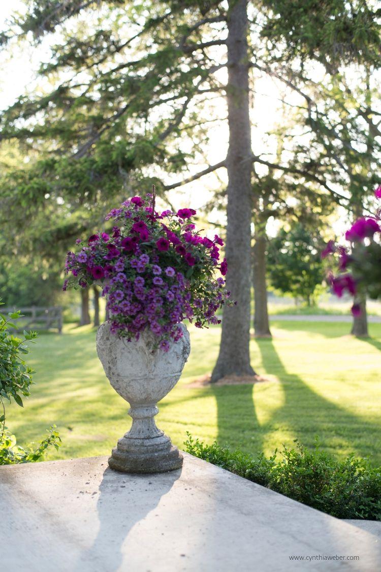 Cottage Renovations Progress Report And Next Steps: BannockBurn 1878 Is On The BHome Summer House Tour… #vintage #flower_pot