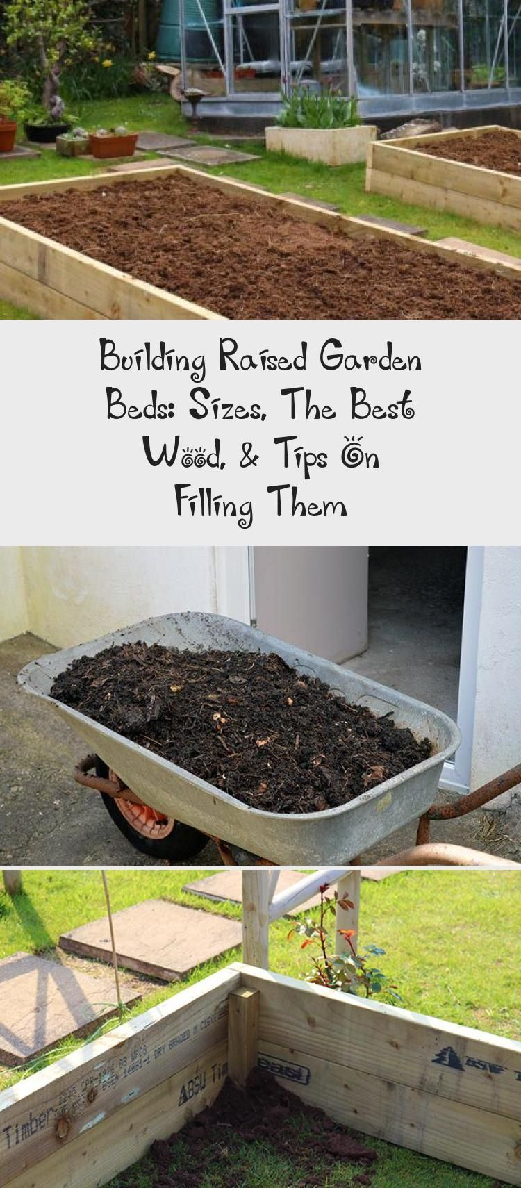 Building Raised Garden Beds Sizes, The Best Wood, & Tips