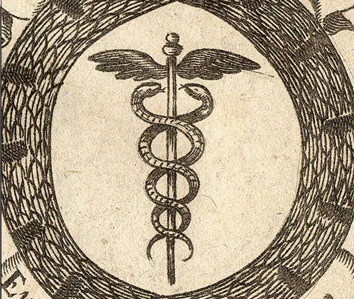 Snake Symbol Idapingala Malefemale Energy Lymph And Blood Ac