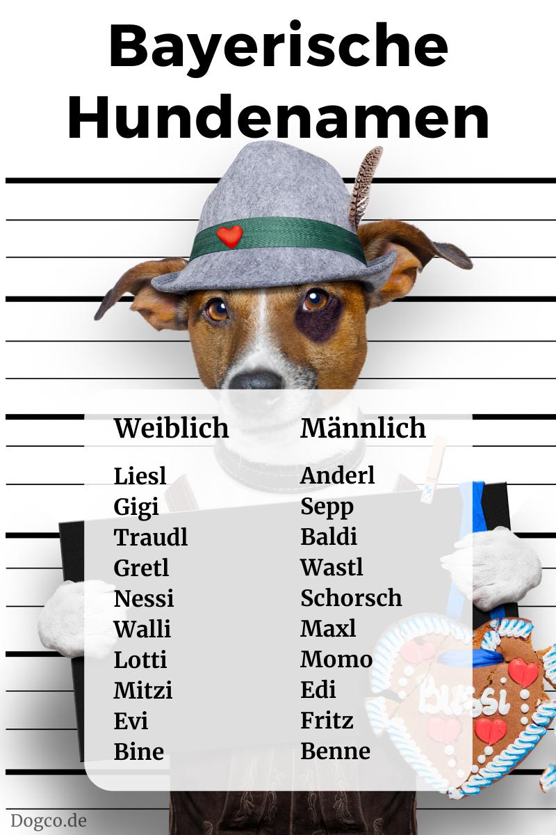 Namen Mit H Männlich