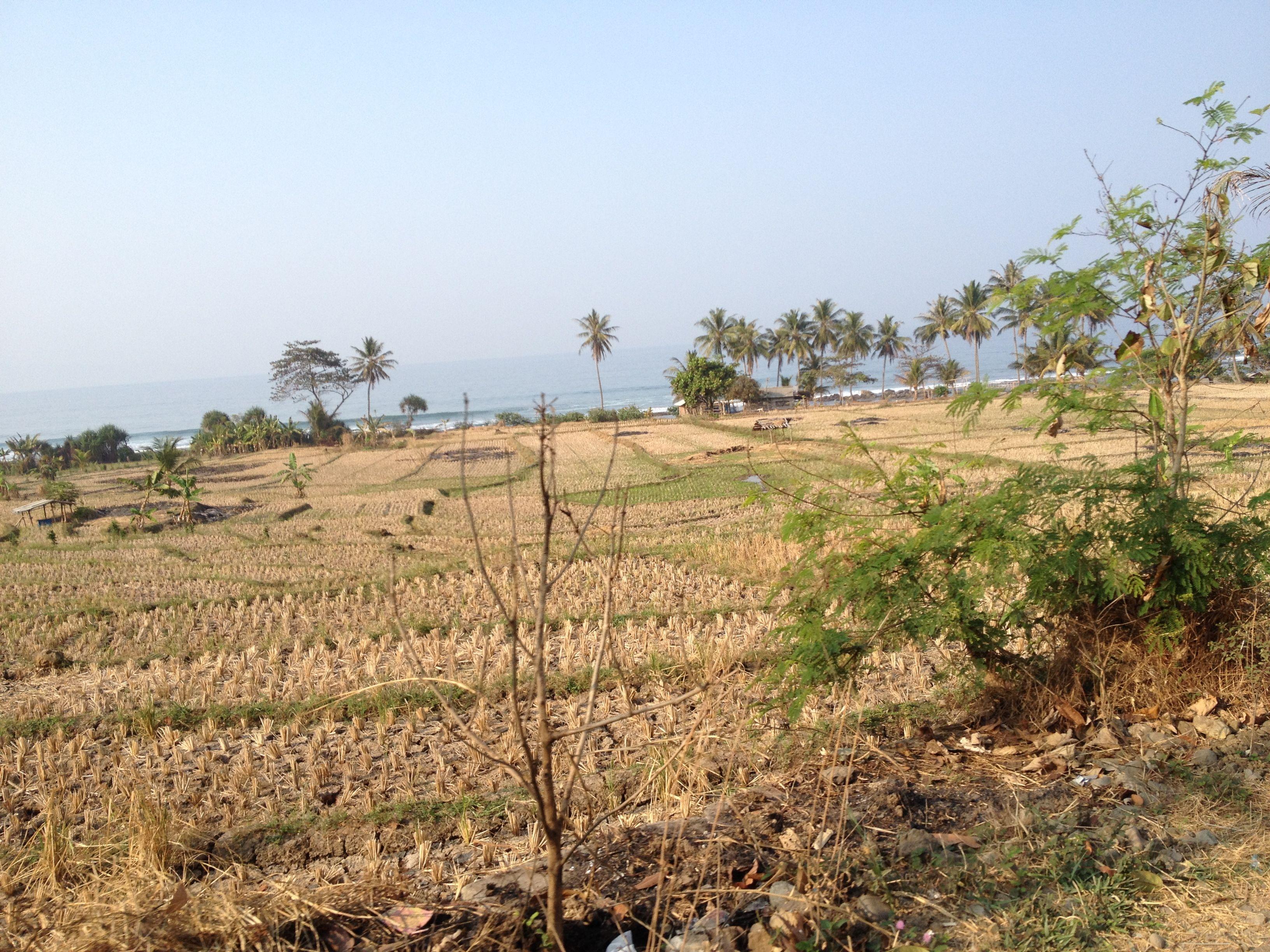 West Java Indonesia part 2