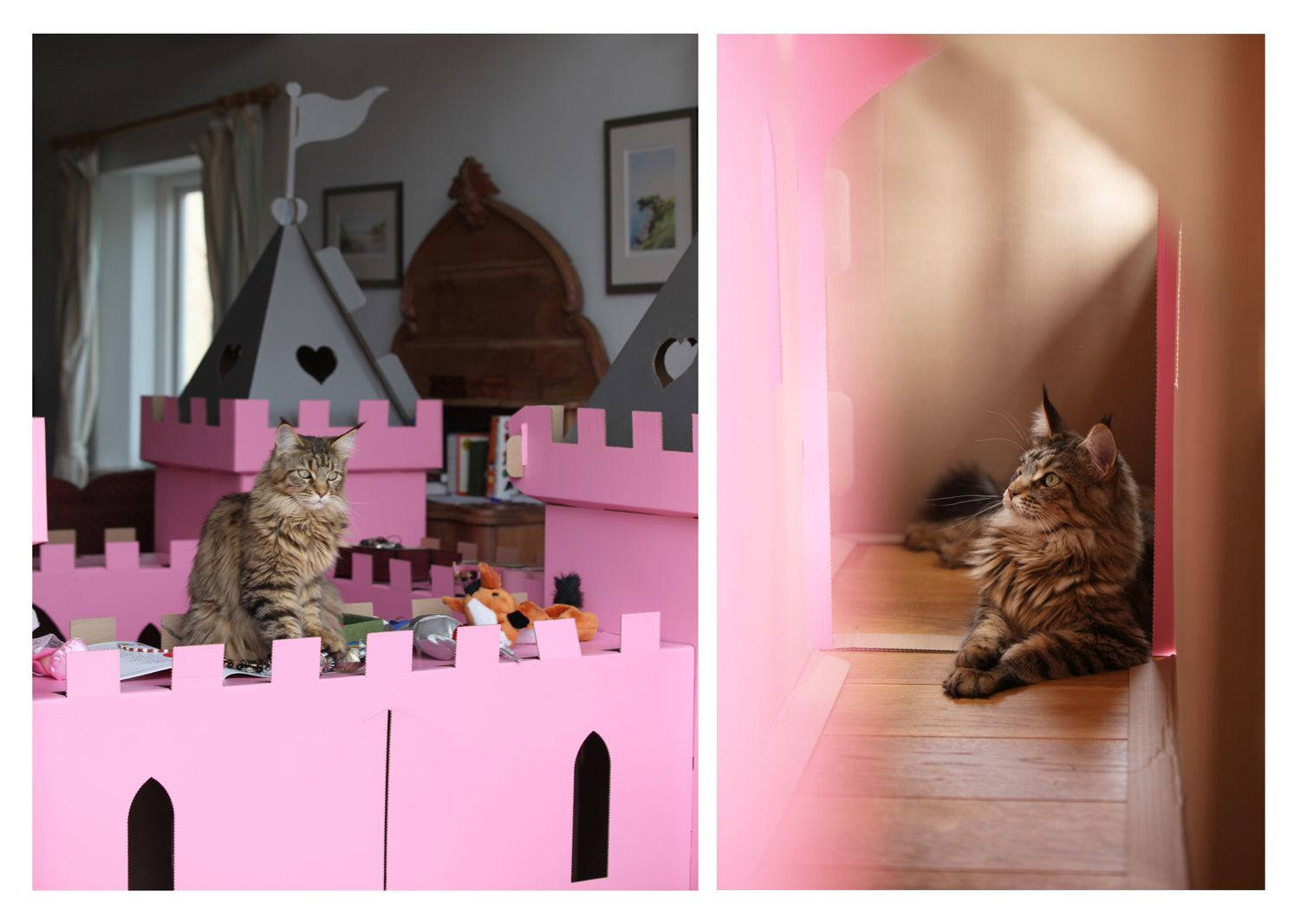 Thula Playing in the pink castle http://irisgracepainting.com/
