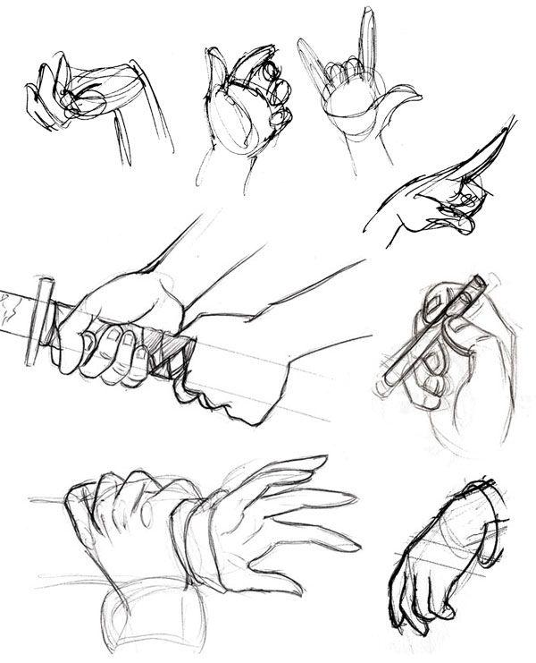 Human Anatomy Fundamentals How To Draw Hands Tuts Design