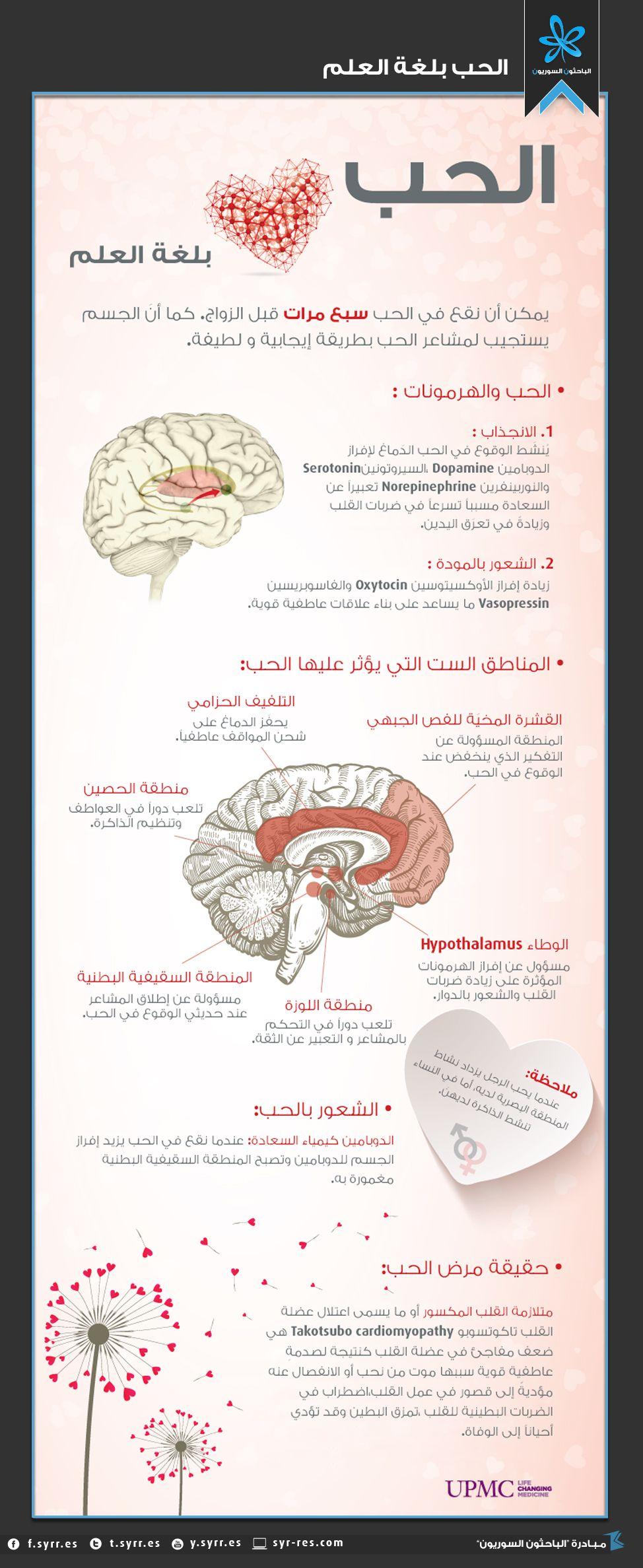 الحب بلغة العلم Love Words Arabic Love Quotes Positive Notes