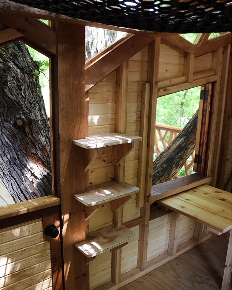 Dutch Door Bookshelves And A Fold Up Table Inside The Treehouse Modern Tree House Tree House Interior Tree House Kids