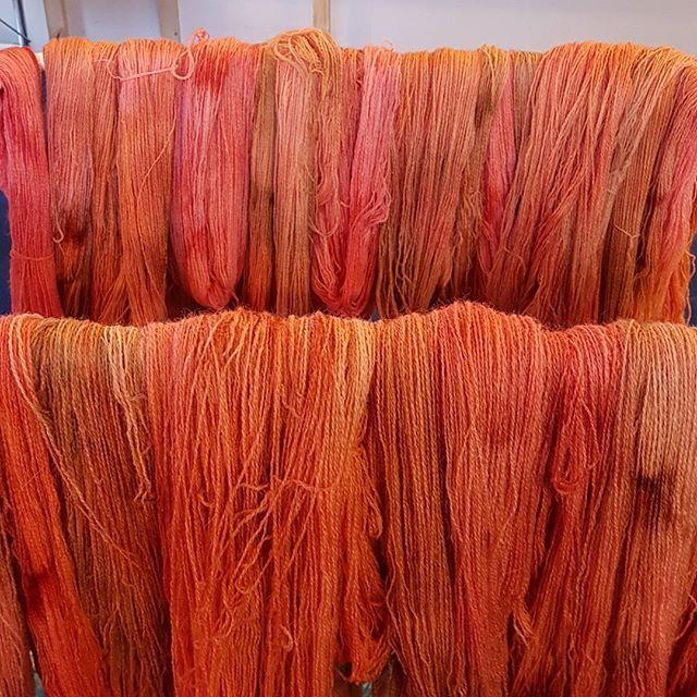 Nyfarvede herligheder.  #handdyedbycharlottespagner #handdyed #handdyedyarn #knitting #indiedyer #håndfarvetgarn #handdyersofinstagram #garnudsalg