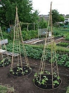 Upside Down Tomato Cages Easy Craft Ideas