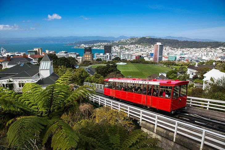15 Top-Rated Tourist Attractions in Wellington | PlanetWare