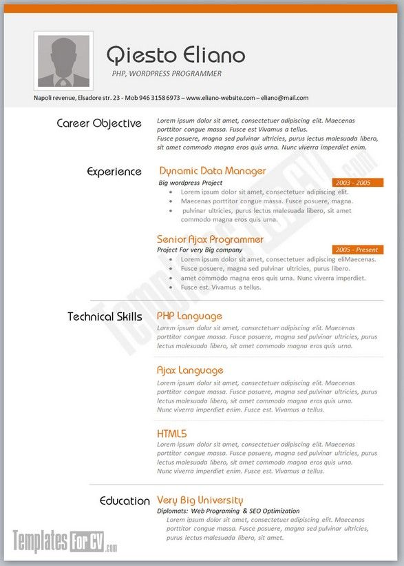 resume sample for job application download