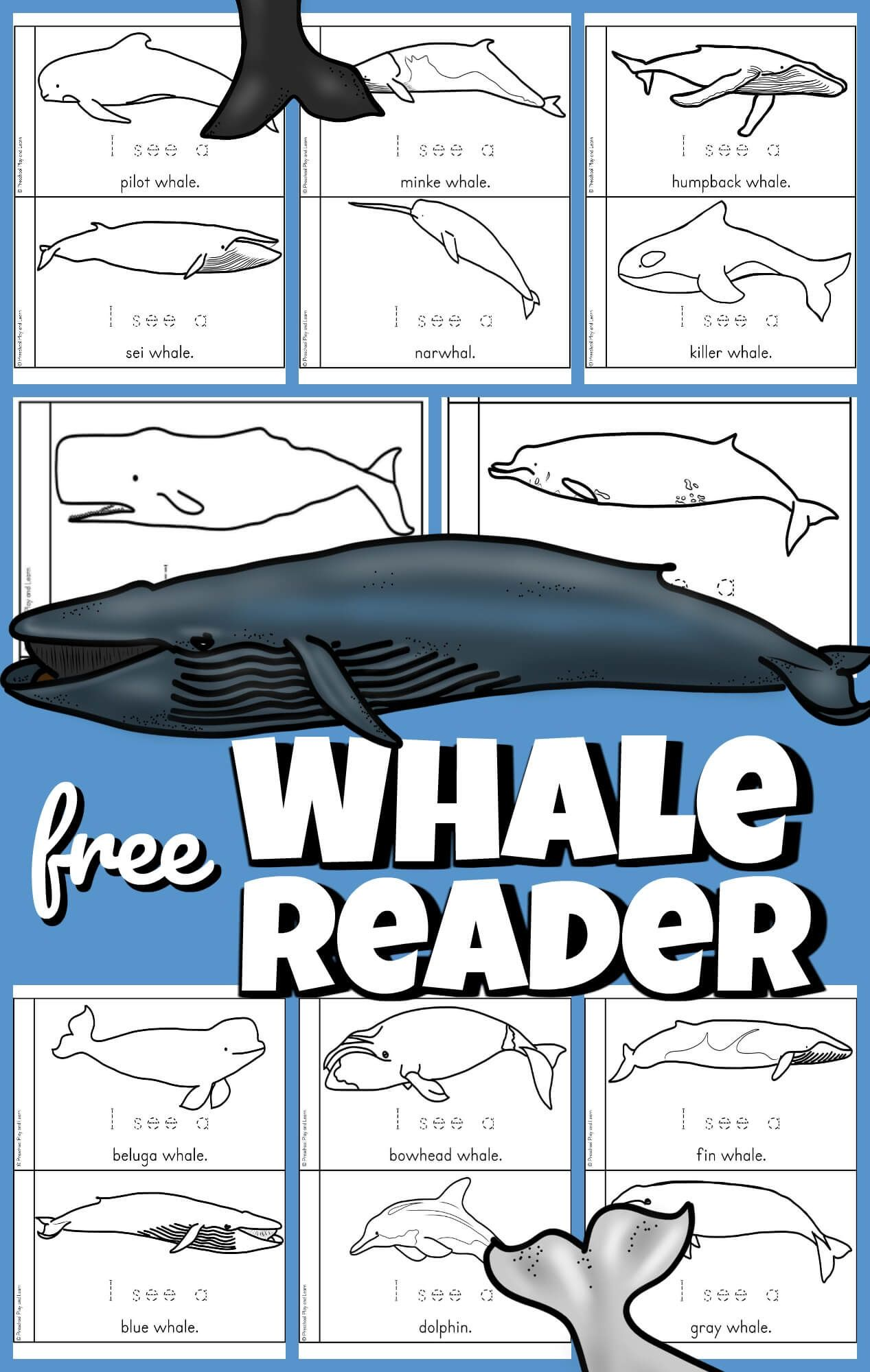 This Super Cute Free Whale Printable Helps Preschool Pre