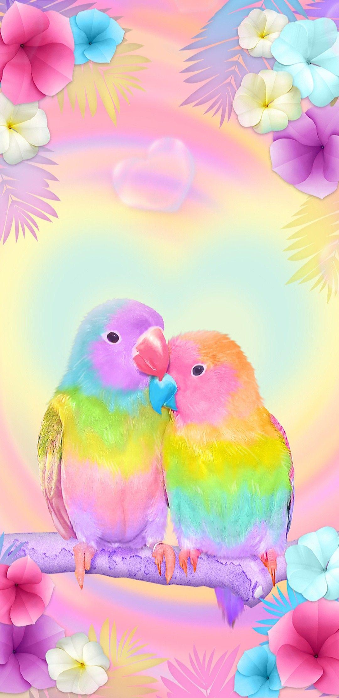 Beautiful White Love Birds Bird Wallpaper Beautiful Wallpapers Birds Wallpaper Hd