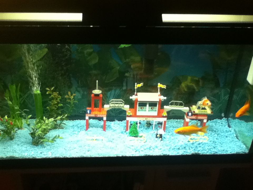 Using Lego Fire Station In Fish Tank Lego Fire Lego Fish Fish Tank