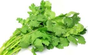 Cilantro Leaves: Cleanser & Nerve Tonic Great nutrients, superb flavor... if you like it! • Improve Digestion • Prevent Infection • Relieve Colic • Soothe Arthritis Pain
