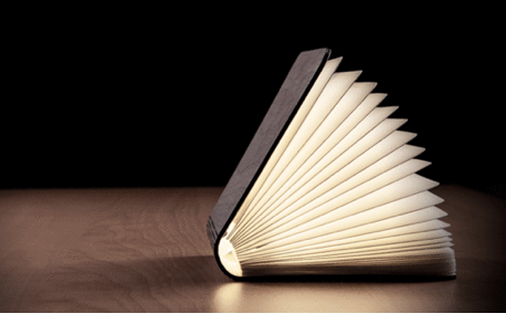 A portable light/book thingy.  Holy Moly. My two favorite things in one genius little invention! This is fantastic!