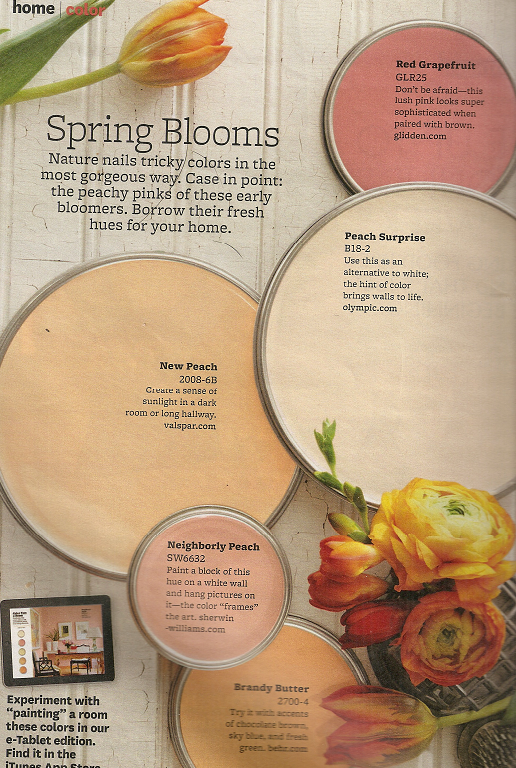30 Of Better Home And Gardens Featured Paint Shades Orange Paint