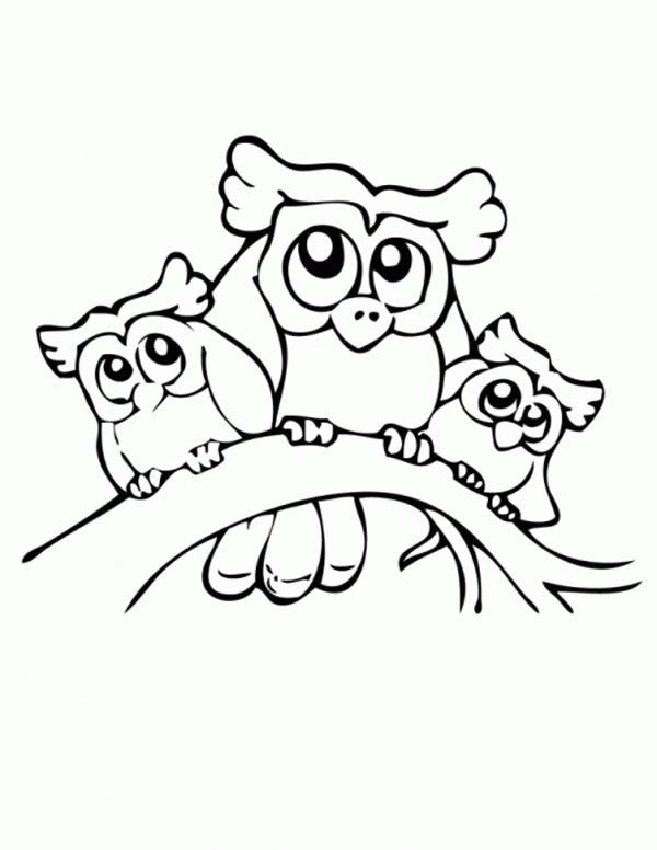 Owl Owl Family Coloring Page Jpg