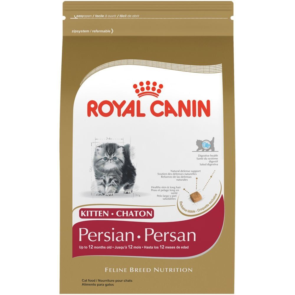 Royal Canin Breed Health Nutrition Persian Kitten Dry Cat Food 3 Pound You Can Find More Details By Visiting The Image Dry Cat Food Cat Food Best Cat Food