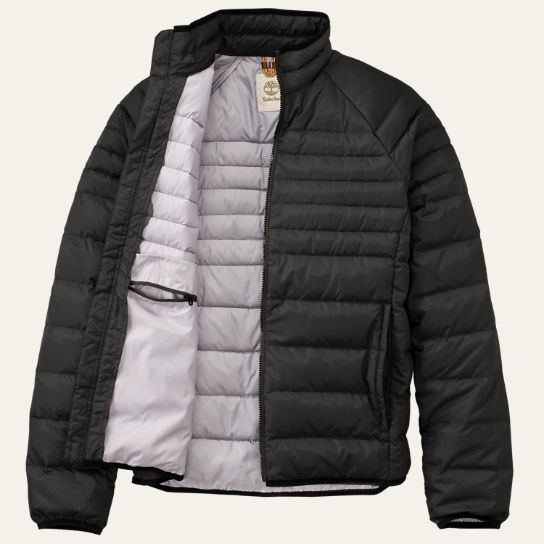 3b728ba5ecb Timberland | Men's Bear Head Down Jacket | Wardrobe | Jackets, Bear ...