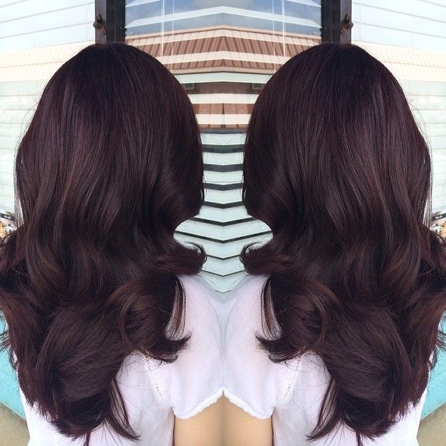 Image result for deep violet chocolate brown hair color hair image result for deep violet chocolate brown hair color pmusecretfo Choice Image