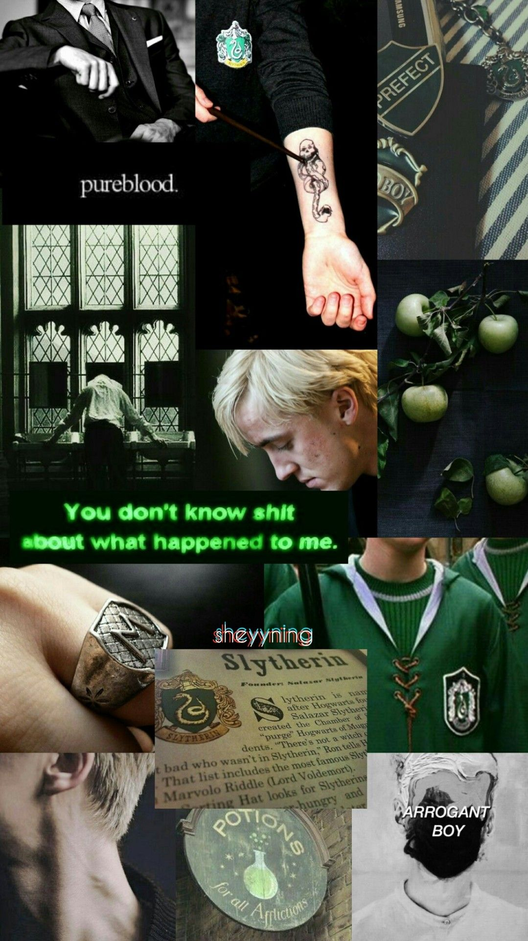 Draco Malfoy Aesthetic Wallpaper for y'all 💚