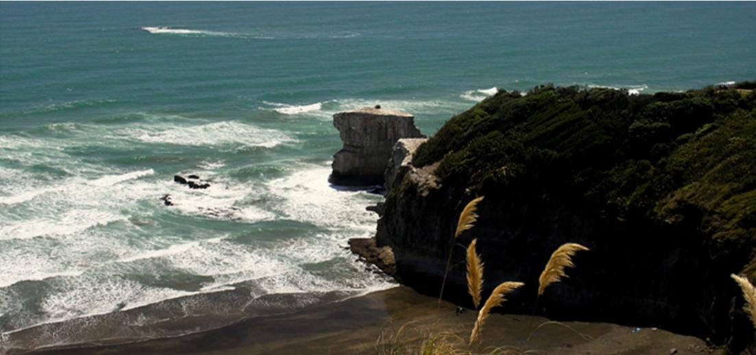 Muriwai Beach West Auckland By Geeta Uka New Zealand Beach Muriwai Beach New Zealand