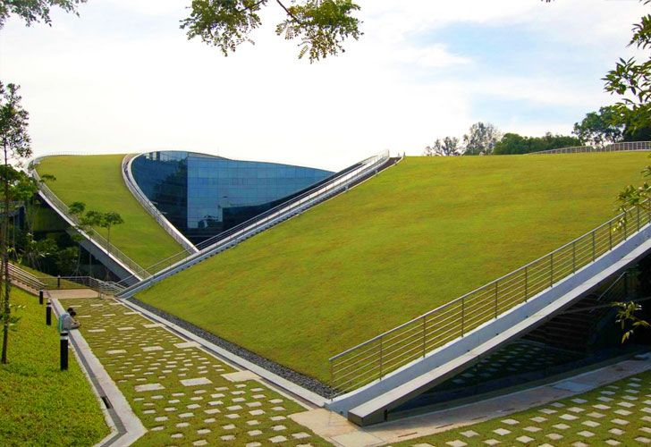 A Swirling Green Roof Tops The Gorgeous Nanyang Technical University In Singapore Green Roof Eco Architecture Nanyang Technological University