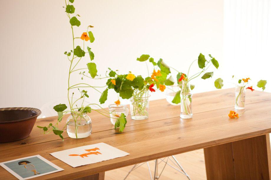 Blomkarser på kjøkkenbordet for noen sommere siden. Latin: Tropaeolaceae