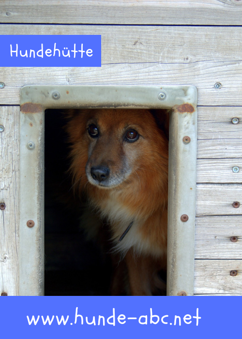 Hundehutte Onlineshop Gunstig Kaufen 30 Rabatt Hunde Hundehutten Hunde T Shirts
