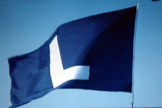 Cubslflag Jpg 542 361 Cubs Win Flag Cubs L Flag Flags For Sale