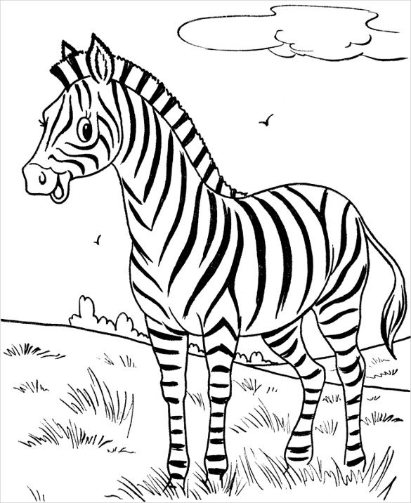 23 Animal Coloring Pages Psd Ai Vector Eps Zebra Coloring