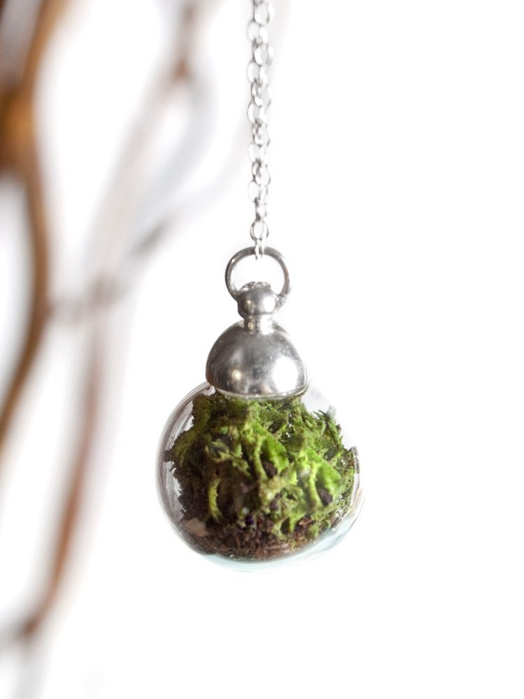 "Tiny self sustaining terrarium on a 24"" silver filled chain. Necklace slips over head. Please see http://www.withroots.com/about page for care..."