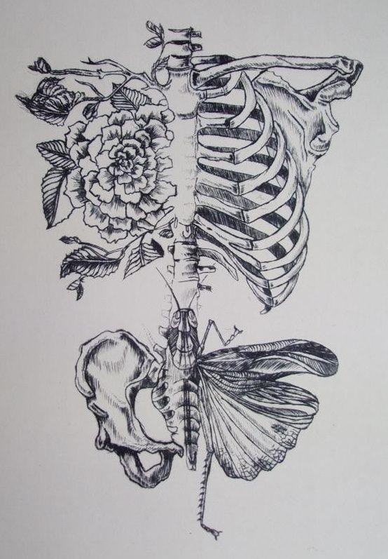 tattoo – Seele der Wissenschaft. Daniel Martin Diaz anatomisches ...
