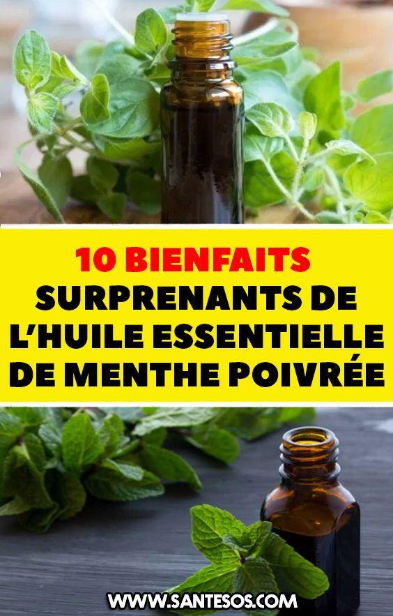 10 Bienfaits Surprenants De L Huile Essentielle De Menthe Poivree Huilesessentielles Huileessentielledementhepoivree Menthepoivree Herbs Cucumber Phyto