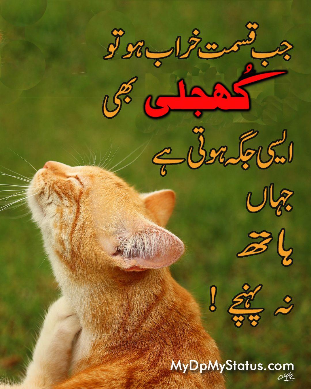 Pin on Urdu Quotes
