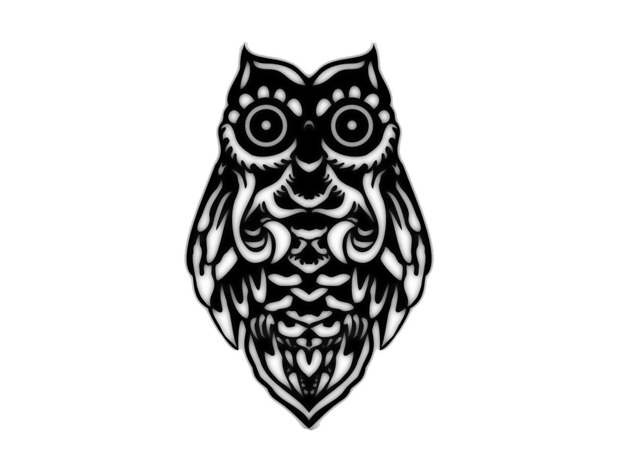 Drawings owl Tribal pictures rare photo