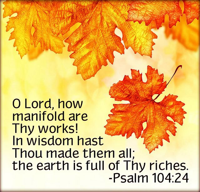 Psalm 104:24 KJV 24 O LORD, how manifold are thy works! in wisdom hast thou made them all: the earth is full of thy riches.