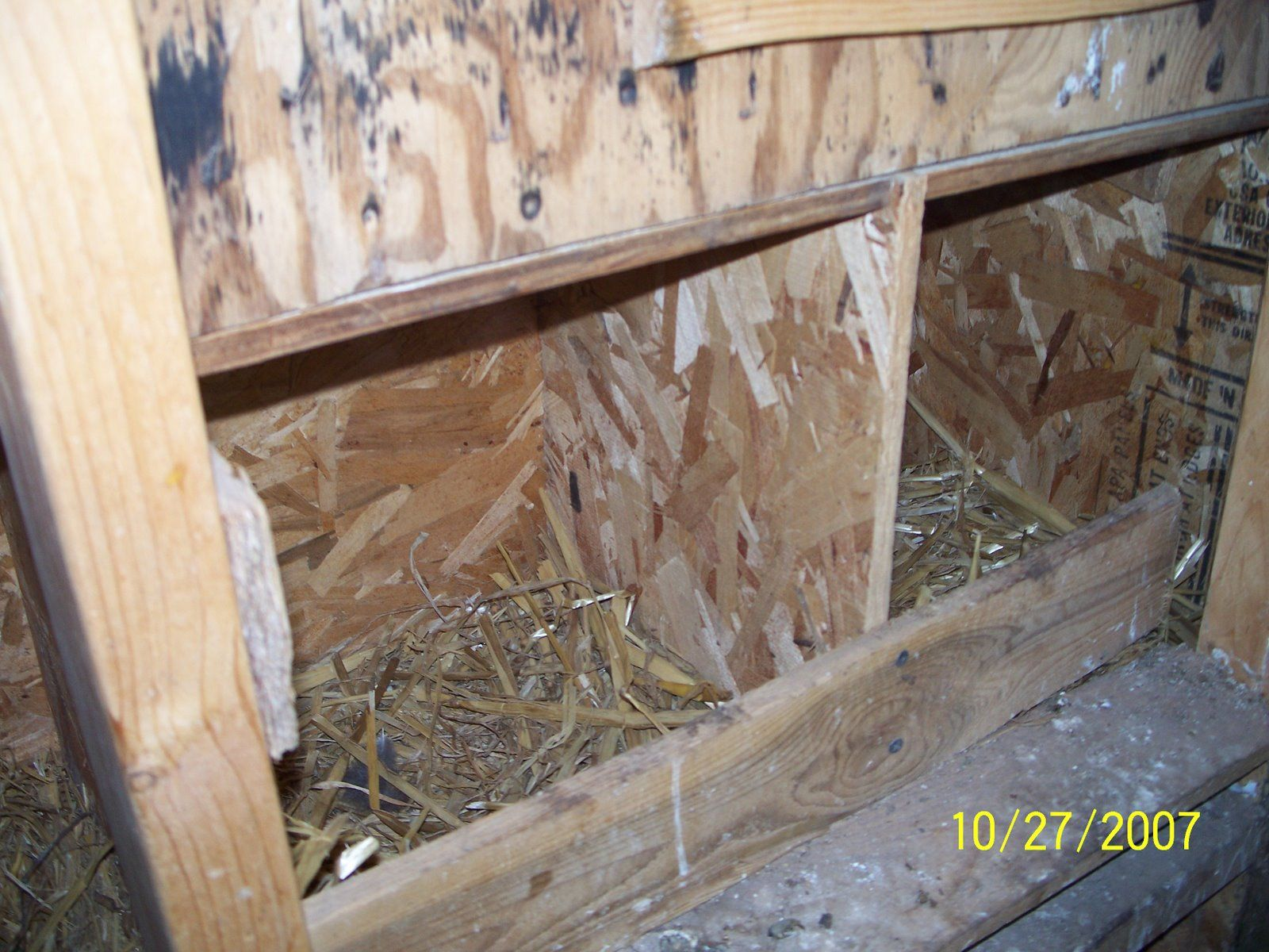 free chicken coop plans really helpful technical tips coopery