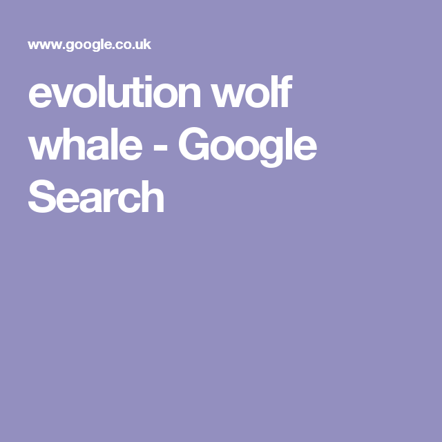 evolution wolf whale - Google Search