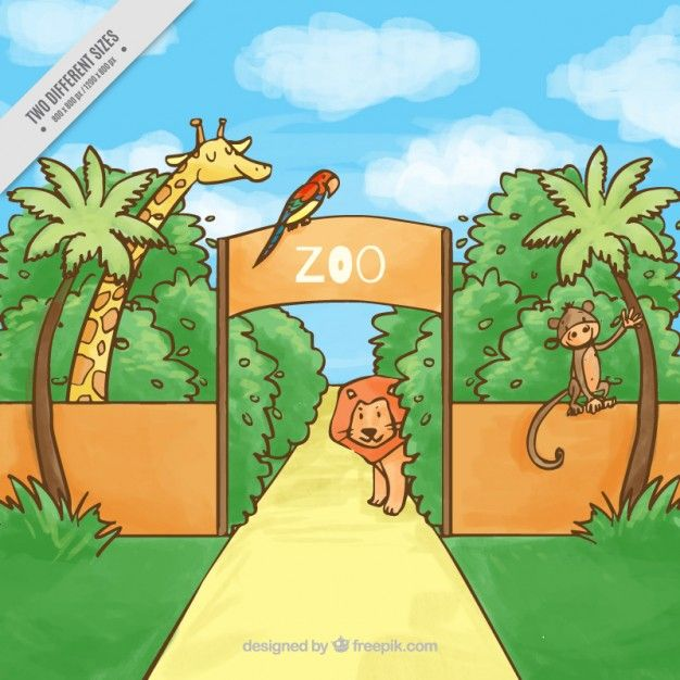 Hand drawn zoo with animals background Free Vector