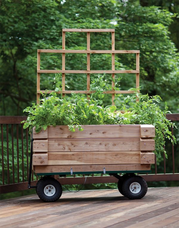 The 25 Best Small Garden Trolley Ideas On Pinterest